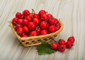 effect of flavonoids on arterial function Background: we have evaluated the antihypertensive effect of several flavonoid extracts in a rat model of arterial hypertension caused by chronic administration (6 weeks) of the nitric oxide synthesis inhibitor, l-name.